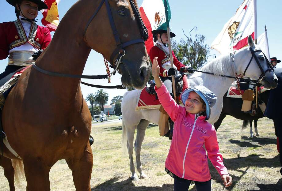 Eflin Demirbas, 8, reaches out to meet a new equine friend on a trip to the Presidio, part of a summer program. Photo: Paul Chinn, The Chronicle