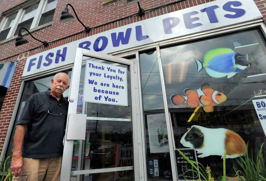 Longtime stamford pet store maintains tradition newstimes for Fish stamford ct