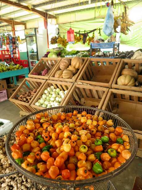 A fruit and vegetable stand in one of the most extensive farmers' markets in Belize, in San Ignacio. Photo: Margo Pfeiff