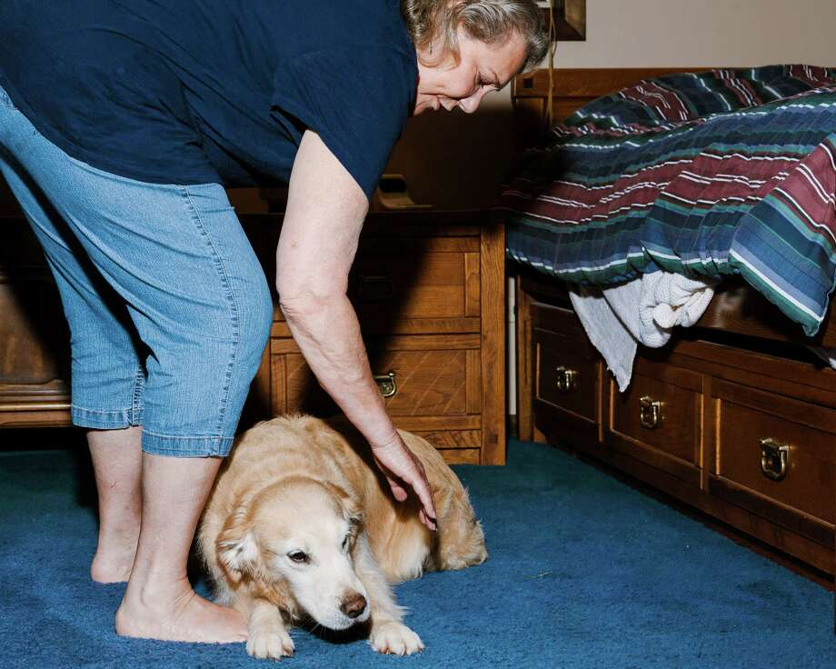 Allene Anderson with her foster dog, Wrigley, a golden retriever who suffers from noise aversion, outside her home in Naperville, Ill. At least 40 percent of dogs experience noise anxiety. Photo: WHITTEN SABBATINI, STR / NYTNS