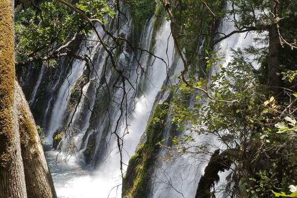 1.2-mile Falls Loop Trail crosses Burney Creek and provides unique side view of McArthur-Burney Falls