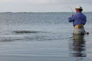 Wadefishing in coastal waters, hugely popular during summer, is one of the ways Texans can be exposed to Vibrio vulnificus, a saltwater bacteria that causes 15-30 life-threatening infections each year in the state.