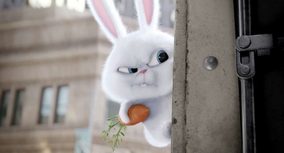 "Snowball rallies abandoned animals in ""The Secret Life of Pets."" Photo: Illumination Entertainment And Universal Pictures / Illumination Entertainment and Universal Pictures"