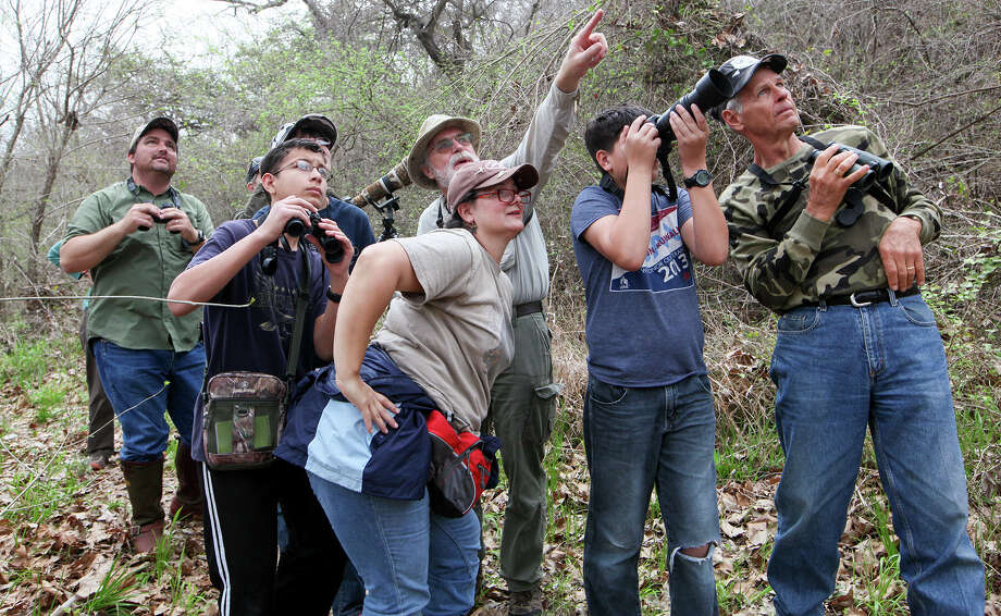 Ray Kutzman (center back) directs a group of birders to a Northern Parula in the top of a large cottonwood tree on the Medina River during a bird walk hosted by the San Antonio Audubon Society at the Land Heritage Institute, 1349 Neal Road, on March 15, 2014. Photo: Marvin Pfeiffer /San Antonio Express-News / Express-News 2014