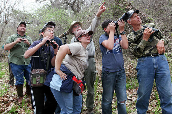 Ray Kutzman (center back) directs a group of birders to a Northern Parula in the top of a large cottonwood tree on the Medina River during a bird walk hosted by the San Antonio Audubon Society at the Land Heritage Institute, 1349 Neal Road, on March 15, 2014.