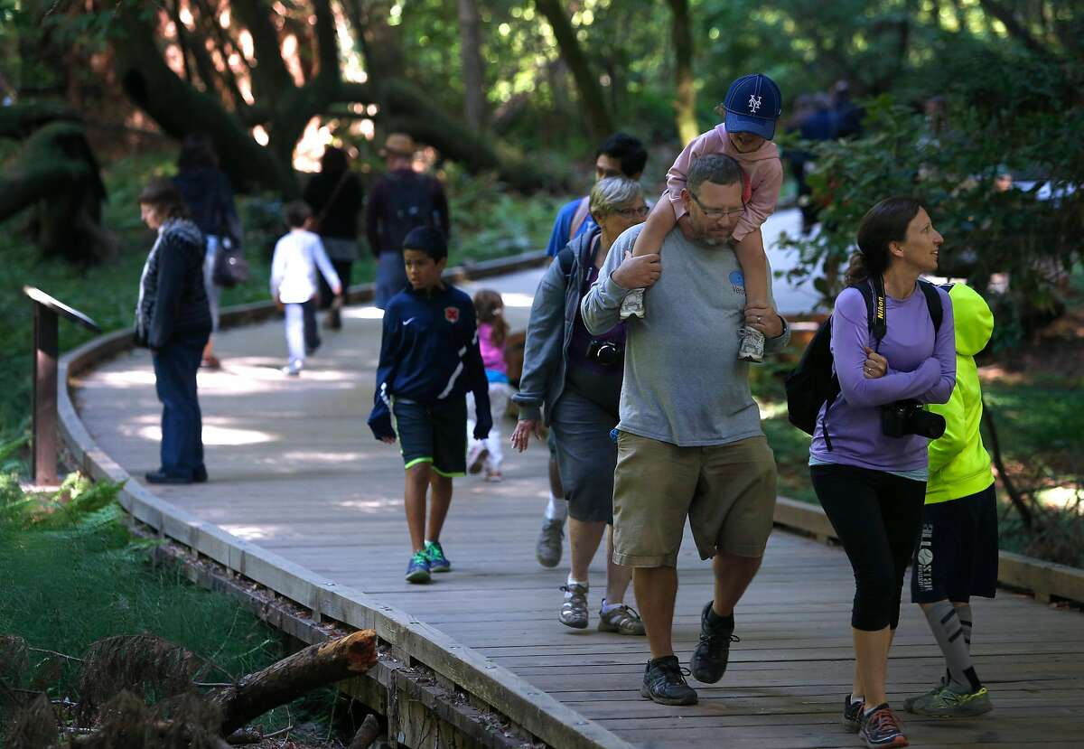 Visitors stroll on boardwalk paths at Muir Woods National Monument in Mill Valley in June 2016. The National Park Service is requiring parking reservations for vehicles and shuttle service as of January 2018 to help reduce congestion.