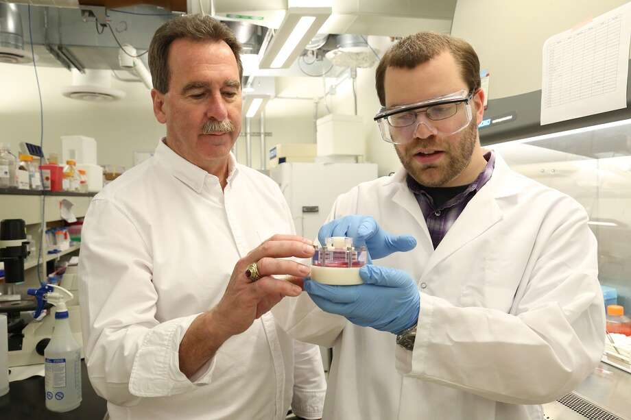 SUNY Poly Professor James Castracane, left, works with SUNY Polt grad student Timothy Masiello, right, on the SpacePharma project.