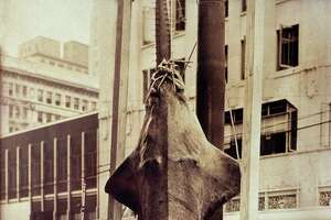 Gus Pangarakis caught a 736-pound sawfish off Galveston's North Jetty in 1939 and brought it to downtown Houston. Battles with such mammoth fish could take three or more hours.
