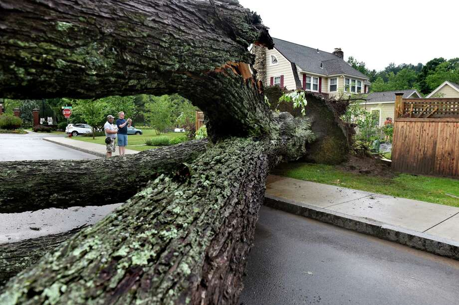Neighbors Gary Sticht, left, and David Dixon survey storm damage on Wright Avenue near Central Park on Friday, July 1, 2016, in Schenectady, N.Y. (Cindy Schultz / Times Union) Photo: Cindy Schultz / Albany Times Union