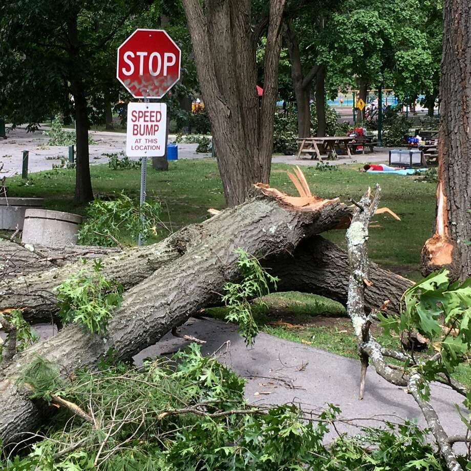 Cleanup continued near Schenectady's Central Park on Saturday, July 2, 2016, if the aftermath of a Friday afternoon thunderstorm that toppled trees and downed powerlines.  (Michael P. Farrell/Times Union)