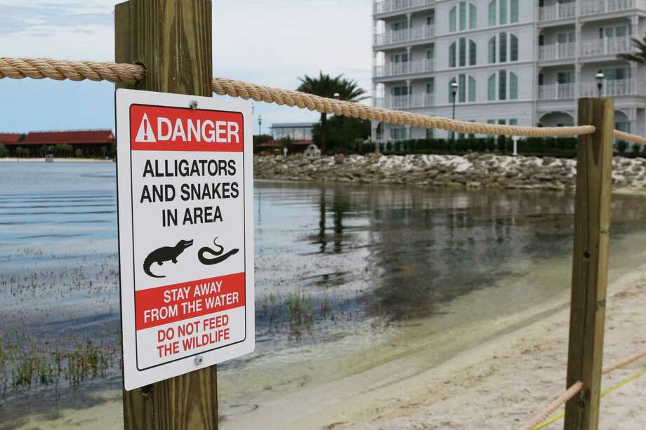 FILE - In this Friday, June, 17, 2016 file photo released by Walt Disney World Resort, a new sign is seen posted on a beach outside a hotel at a Walt Disney World resort in Lake Buena Vista, Fla., after a 2-year-old Nebraska boy killed by an alligator at Disney World.  Matt Graves, the father of the toddler killed by an alligator at Disney on June 14, told rescue officials two alligators were involved in the attack, according to emails from the Reedy Creek Fire Department.  (Walt Disney World Resort via AP, File) Photo: HONS / Walt Disney World Resort