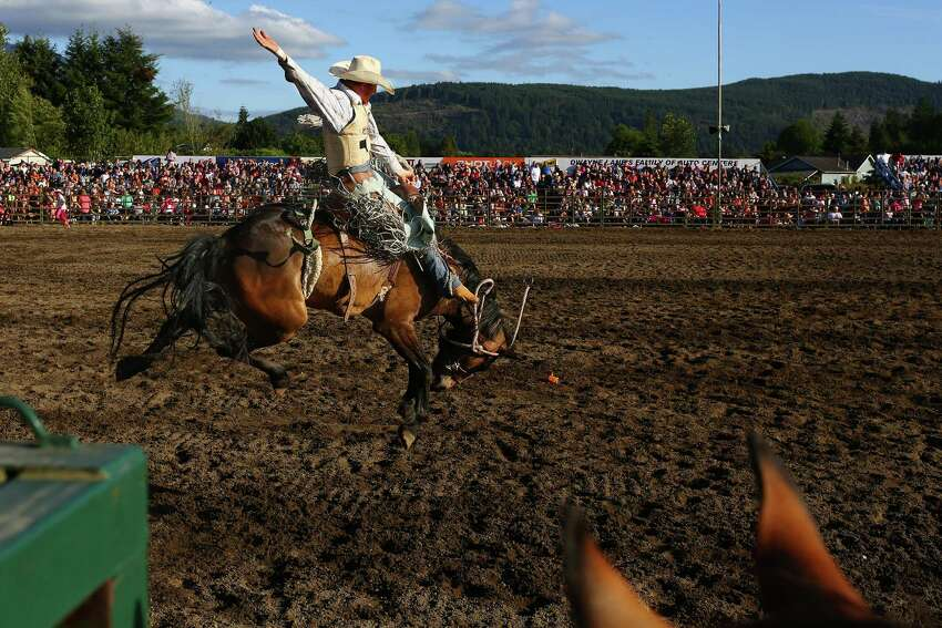 A rider holds on tight during the Saddle Bronc Riding event at the Sedro-Woolley Riding Club Rodeo, Sunday, July 3, 2016 at the Sedro-Woolley rodeo grounds. The rodeo is a part of the annual