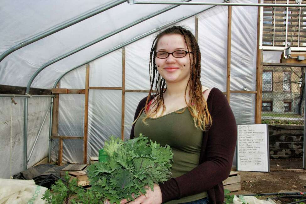 A participants harvests plants at Capital Roots' Produce Project greenhouses in 2016. (Provided photo)