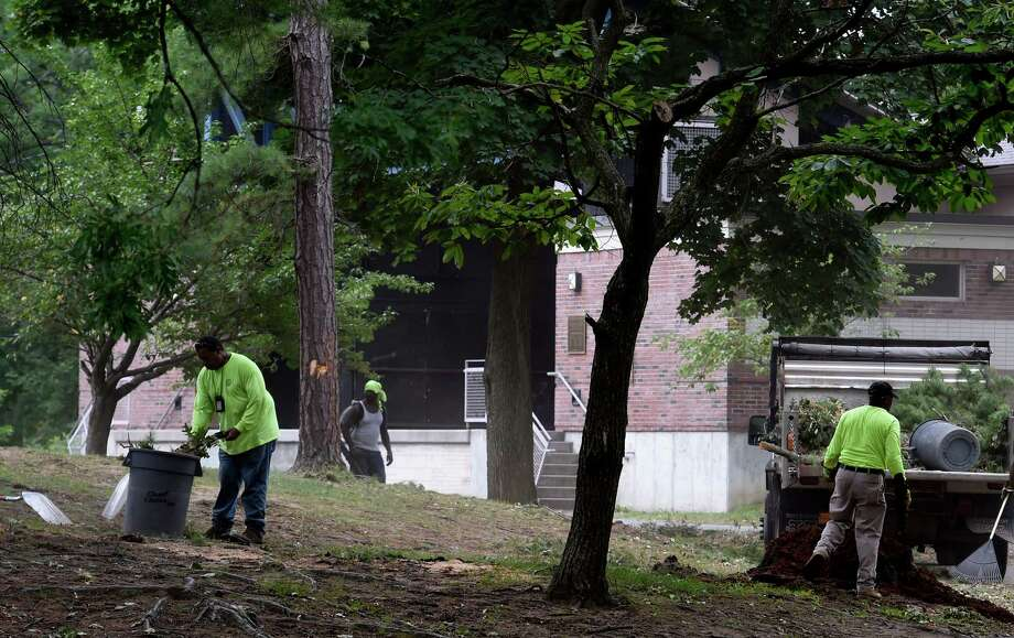 Work crews from the City and private contractors have the labor intensive task of cleaning up the downed trees and limbs throughout Central Park from last Friday's storm Tuesday July 5, 2016 in Schenectady, N.Y. (Skip Dickstein/Times Union) Photo: SKIP DICKSTEIN / 20037224A