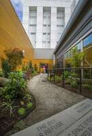 At the VA medical center on Beacon Hill in Seattle, a new healing garden softens the institutional edges, providing soothing sounds of water and inviting birds into the space to help patients and their loved ones.