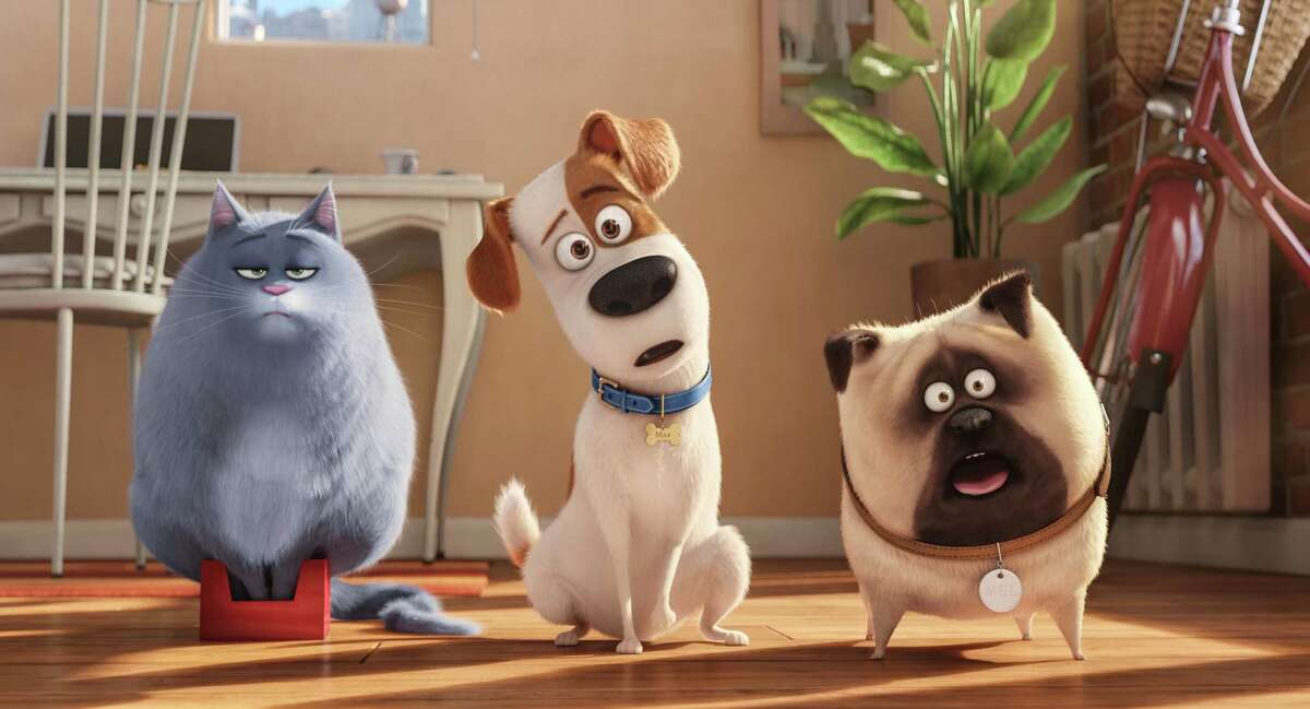 Chloe (voiced by Lake Bell), from left, Max (Louis C.K.) and Mel (Bobby Moynihan) plot while their humans are away in