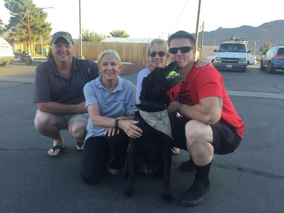 Molli Oliver, a 65-year-old United Airlines flight attendant from Los Angeles, has spent the past year reuniting retired military work dogs with former deployment partners and trainers.  Photo: Provided By Molli Oliver