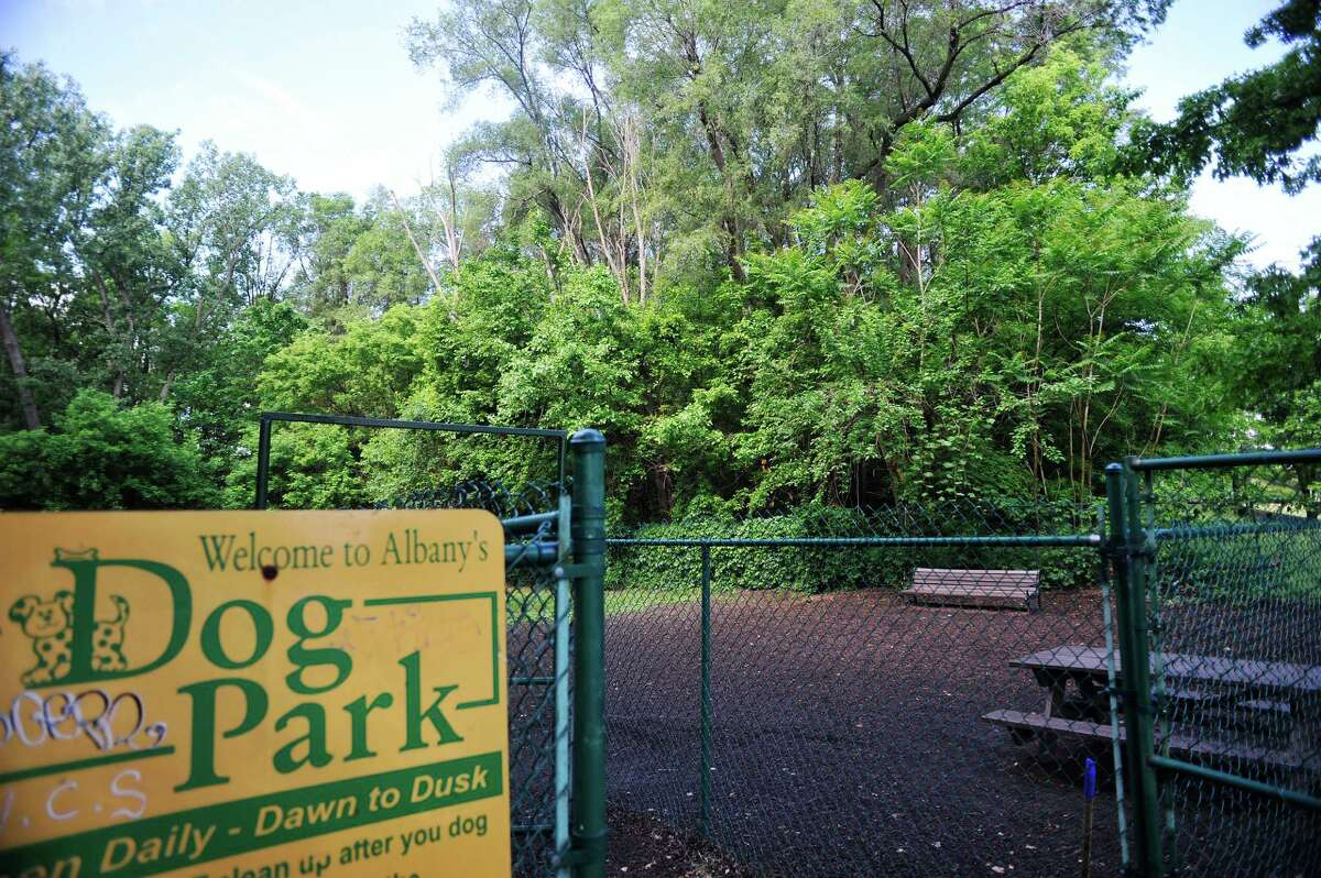 A view of a wooded section behind the fenced dog area inside Westland Hills park on Tuesday, June 7, 2016, in Albany, N.Y. There is lead contamination below the surface in the wooded area. (Paul Buckowski / Times Union)