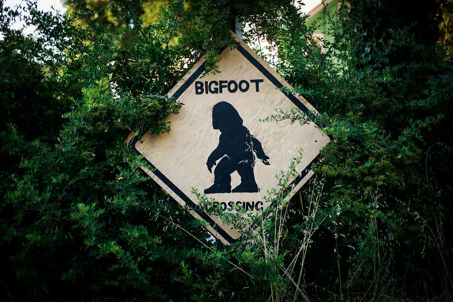 A crossing sign in Willow Creek, heart of Bigfoot Country. Photo: Max Whittaker/Prime, Special To The Chronicle