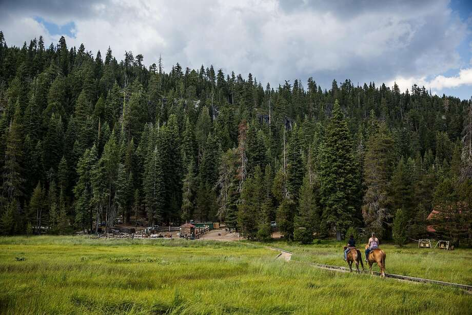 Riders return to the Drakesbad Guest Ranch, which is surrounded by Lassen Volcanic National Park. Photo: Max Whittaker/Prime, Special To The Chronicle