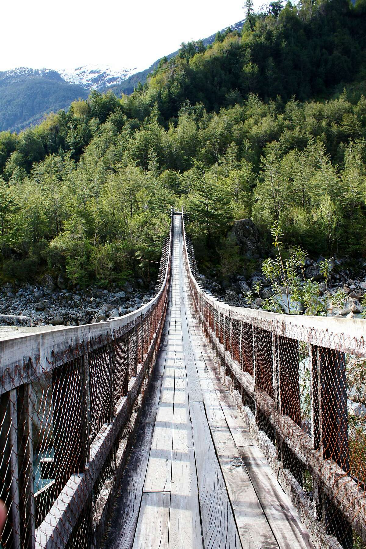 The bridge at the start of the Hanging Glacier Hike, Quelat National Park, Aysen, Chile.
