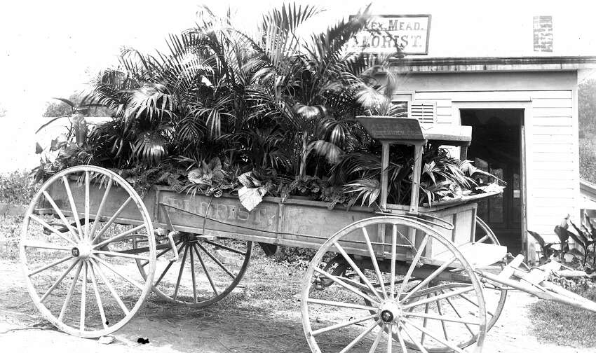 1910 - Mead Florist Greenwich Connecticut. A great Americana image from an original negative.