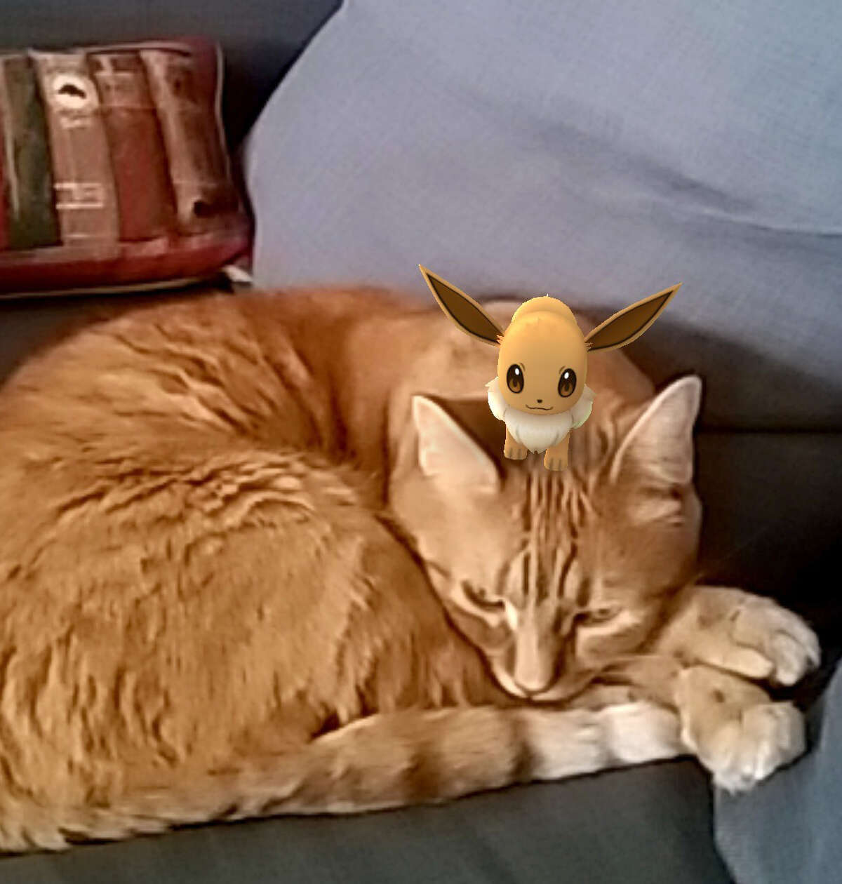 Pokémon Go characters show up when viewed through a users smartphone camera.