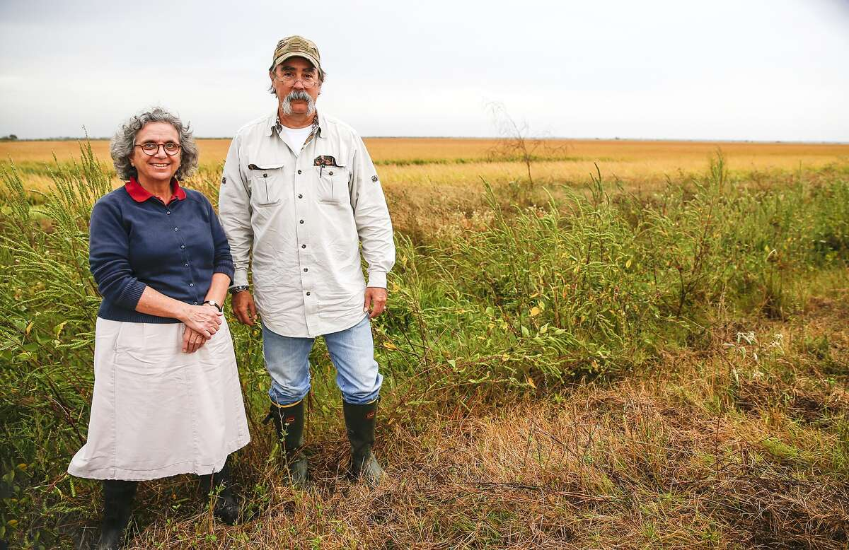 Katy Prairie Conservancy Executive Director Mary Anne Piacentini and Conservation Stewardship Director Wesley Newman stand in front of protected rice fields that are part of the consevancy project in danger due to plans to expand State Highway 36 northward through the Katy Prairie.