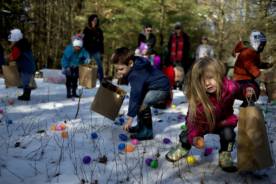 Four-year-olds Evan Hernandez of Freeland, center, and Kylie Dinnan of Midland pick-up plastic Easter eggs Saturday morning at the Chippewa Nature Center. This is the tenth year that the Chippewa Nature Center has hosted an egg hunt. More than 100 kids registered for this year's hunt. Photo: Brittney Lohmiller | Blohmiller@mdn.net