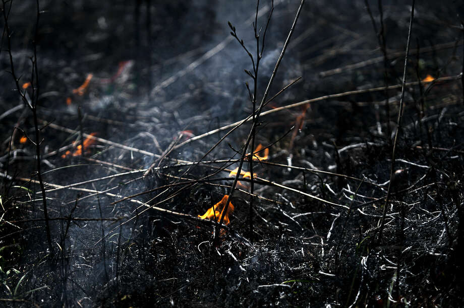 ERIN KIRKLAND   ekirkland@mdn.net Fire engulfs plants during a controlled burn at the Chippewa Nature Center. This is the second burn that the organization has conducted on their property since 2014. Burns allow for better biodiversity, can enhance certain native plants, control some types of invasive plants, help improve soil conditions, remove dead vegetation and restore open areas. Photo: Erin Kirkland/Midland Daily News