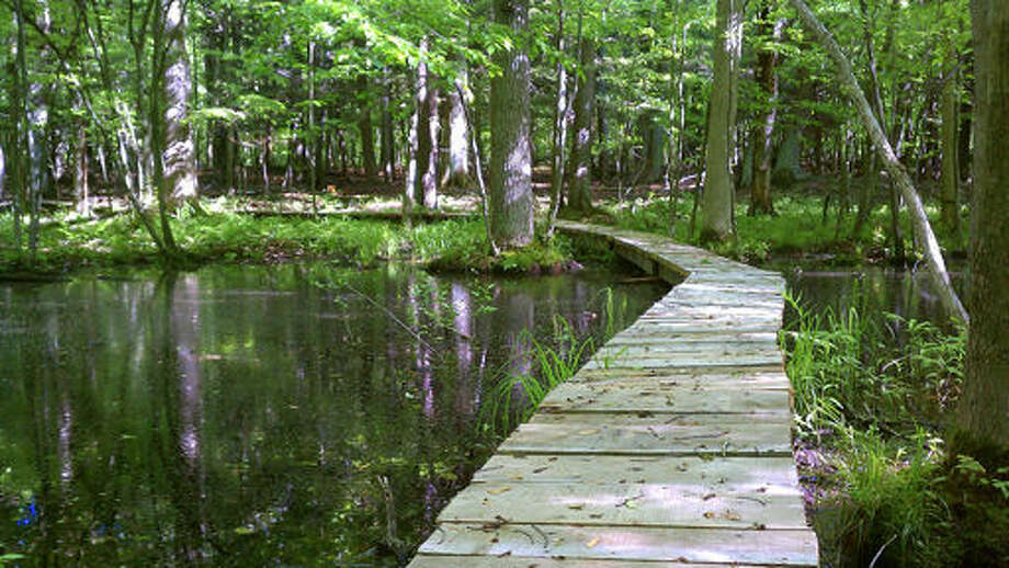 The River Point boardwalk helps people pass through a portion of a trail at the Chippewa Nature Center. Photo: Picasa