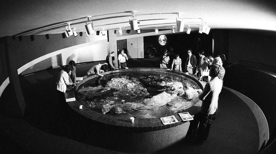 May 5, 1977: A view from above of the touch pool at the Steinhart Aquarium in the California Academy of Sciences. Photo: Vincent Maggiora, The Chronicle