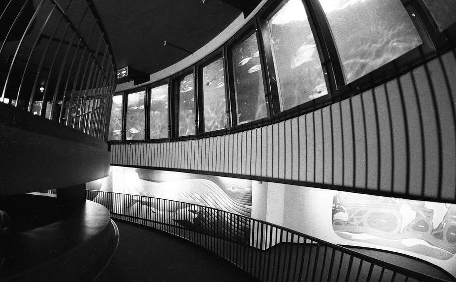 A view of the staircase at the old Steinhart Aquarium fish roundabout in the California Academy of Sciences. Photo: Vincent Maggiora, The Chronicle