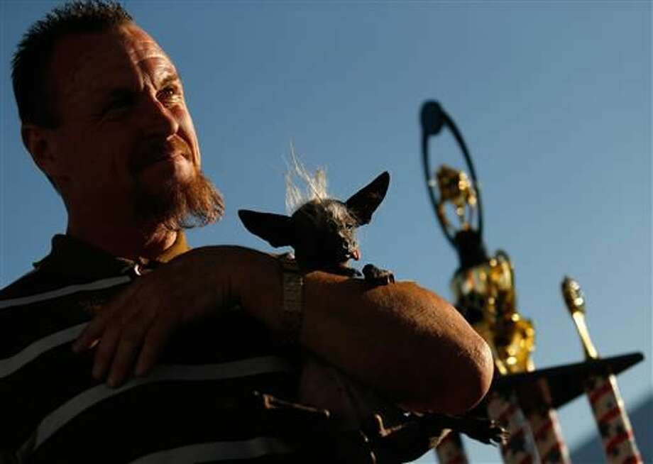 Jason Wurtz of Encino cradles his grand prize-winning dog SweePee Rambo, a 17-year-old Chinese Crested Chihuahua, after the World's Ugliest Dog Contest at the Sonoma-Marin Fair in Petaluma, Calif., on Friday, June 24, 2016. (Alvin Jornada /The Press Democrat via AP)