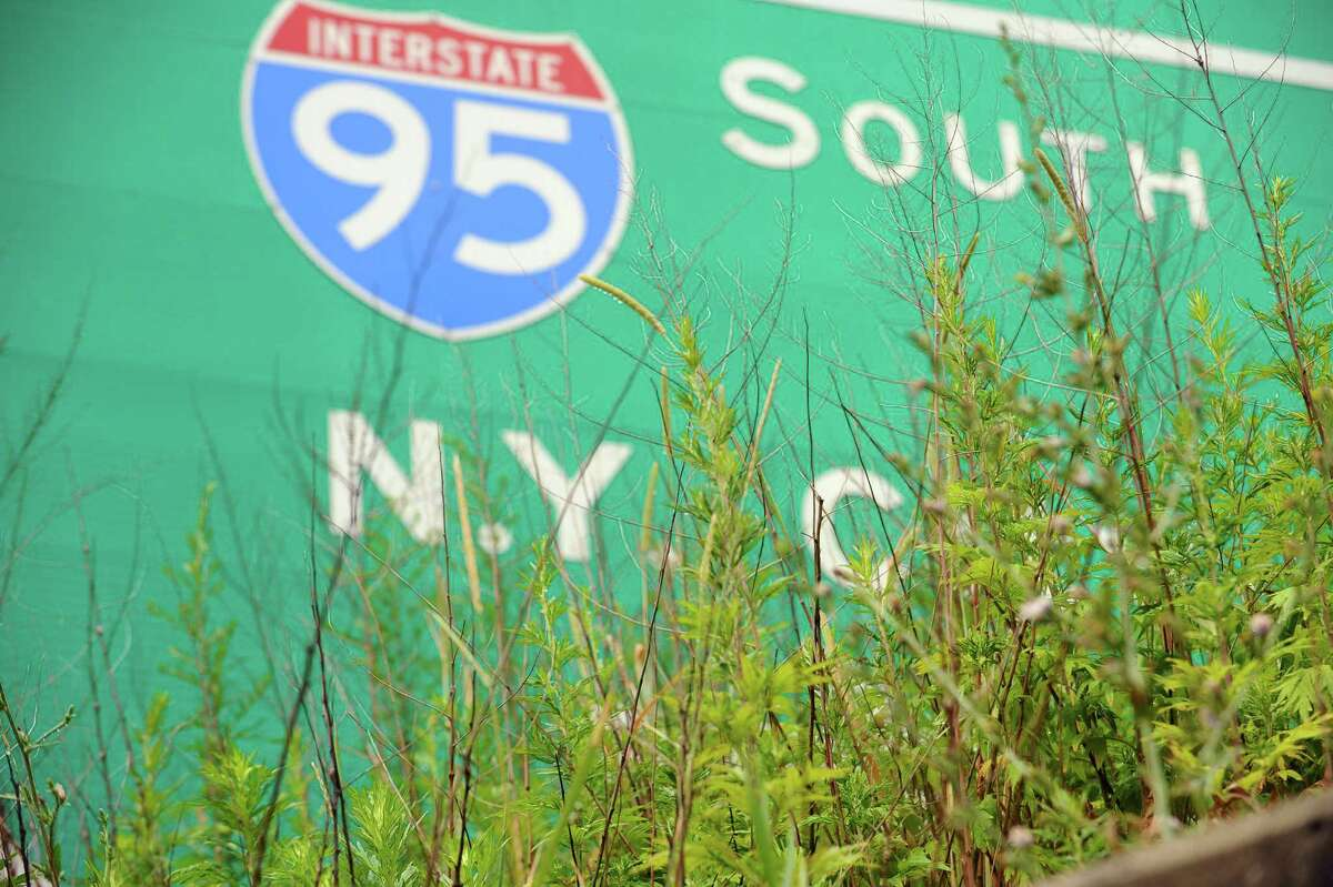 Tall weeds block a section of an I-95 traffic sign on Thursday, July 7, 2016. Stamford Partnership is attempting to put together a plan with the city of Stamford and local propety owners to eliminate weeds and trash on embankments and sidewalks around the city.