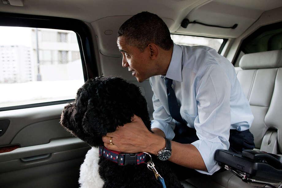2011: The president and family dog Bo do some Christmas shopping in Alexandria, Va. Photo: Pete Souza/The White House