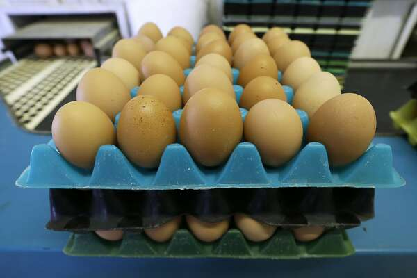 FILE - In this Oct. 21, 2015, file photo, eggs laid by cage-free chickens sit in a holder after being sorted at a farm near Waukon, Iowa. In less than a year, eggs have gone from being an expensive staple at the height of the bird flu crisis in 2015 to reaching the cheapest prices in a decade due to fully restocked poultry barns. (AP Photo/Charlie Neibergall, File)
