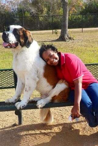 P Lee Carrier S St Bernard Fachi Was Found Dead On The