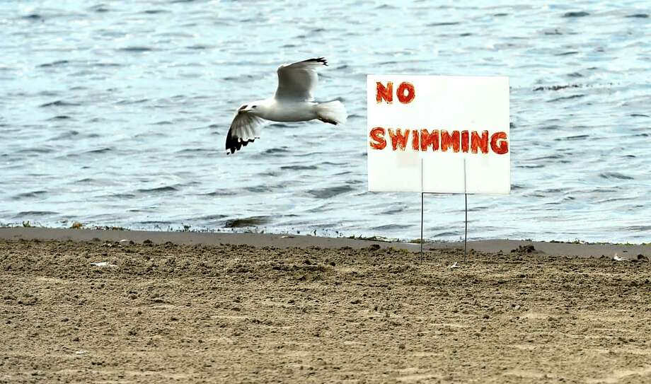 Swimming has been suspended at Brown's Beach Friday July 15  2016 in Stillwater, N.Y. (Skip Dickstein/Times Union) Photo: SKIP DICKSTEIN