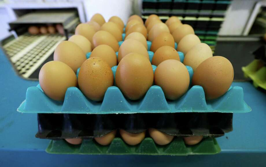 FILE - In this Oct. 21, 2015, file photo, eggs laid by cage-free chickens sit in a holder after being sorted at a farm near Waukon, Iowa. In less than a year, eggs have gone from being an expensive staple at the height of the bird flu crisis in 2015 to reaching the cheapest prices in a decade due to fully restocked poultry barns. (AP Photo/Charlie Neibergall, File) Photo: Charlie Neibergall, STF / Copyright 2016 The Associated Press. All rights reserved. This material may not be published, broadcast, rewritten or redistribu