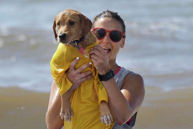 Emily Blomberg of Galveston holds up Madison as they surf during the Ohana Surf Dog Competition benefitting the Galveston Island Humane Society Sunday, July 17, 2016, in Galveston.