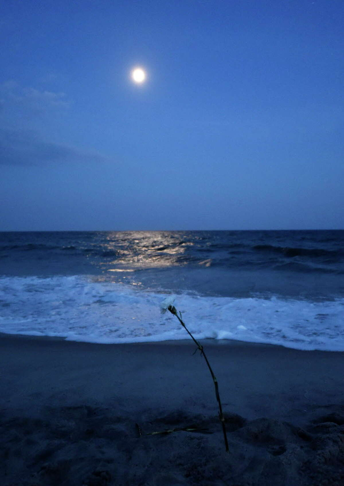 Moonlight over the Atlantic Ocean lights a single rose planted in the sand by a mourner after the ceremony for the 20th anniversary of the TWA Flight 800 plane crash at Smith Point County Park on Sunday, July 17, 2016, in Shirley, N.Y. Families and friends of some of the 230 people killed when a Paris-bound TWA flight 800 jet exploded in the sky off the Long Island coast commemorated the 20th anniversary of the crash that took place on July 17, 1996. (AP Photo/Kathy Kmonicek) ORG XMIT: NYKK113