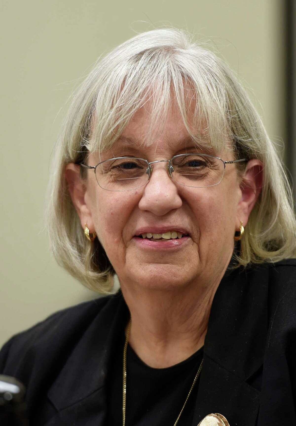 Risa Sugarman, enforcement council for the New York State Board of Elections during the board meeting today Sept. 26, 2014 at their offices in Albany, N.Y. (Skip Dickstein/Times Union)