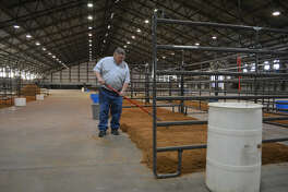 Ollie Liner Center manager Lynn Barton rakes sand in the steer and heifer stalls in preparation of the Plainview Community Stock Show this weekend and the 80th annual Hale County Stock Show next weekend. Exhibitors will begin bringing their animals into the exhibition barn on Friday with the community show starting at 10 a.m. Saturday with swine judging, followed by heifers, steers, lambs and goats.