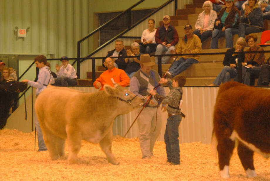 Cattle judge David Groschke congratulates Rowdy Huffaker of Abernathy 4-H on Saturday after selecting his medium weigh Exotic as the Grand Champion Steer of the 79th Annual Hale County Stock Show. The championship ring is not unfamiliar for Huffaker, who exhibited the Grand Champion Heifer at the 2013 county stock show. Groschke is Texas A&M AgriLife Extension agent in Limestone County. The stock show continues today with hog judging at noon and concludes on Monday with the premium auction at 6 p.m. All events are being held at the Ollie Liner Center in Plainview. (See more photos on Page 4A and online at www.MyPlainview.com. Full results also will be posted on www.MyPlainview.com, along with a photo gallery from the stock show.)  Photo: Doug McDonough/Plainview Herald