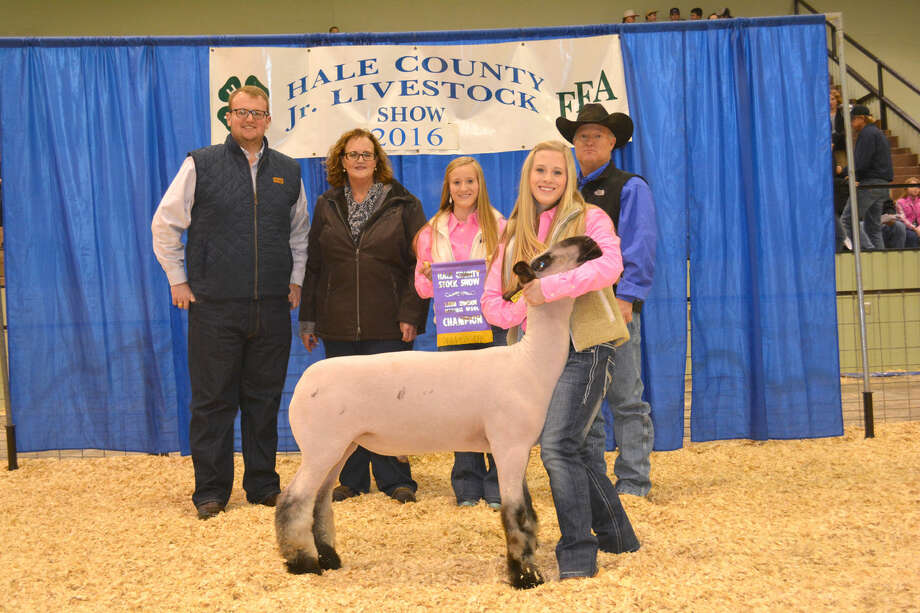 This year's grand champion lamb, a 156-pound medium wool shown by Karlee Hegi of Abernathy FFA, received a winning bid of $2,000 from the Mark Marley family.
