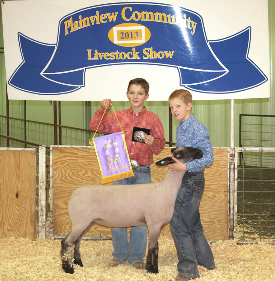 Hagen Offield holds the grand champion banner and belt buckle for brother Kelton, who exhibited the grand champion lamb in Saturday's Plainview Stock Show.