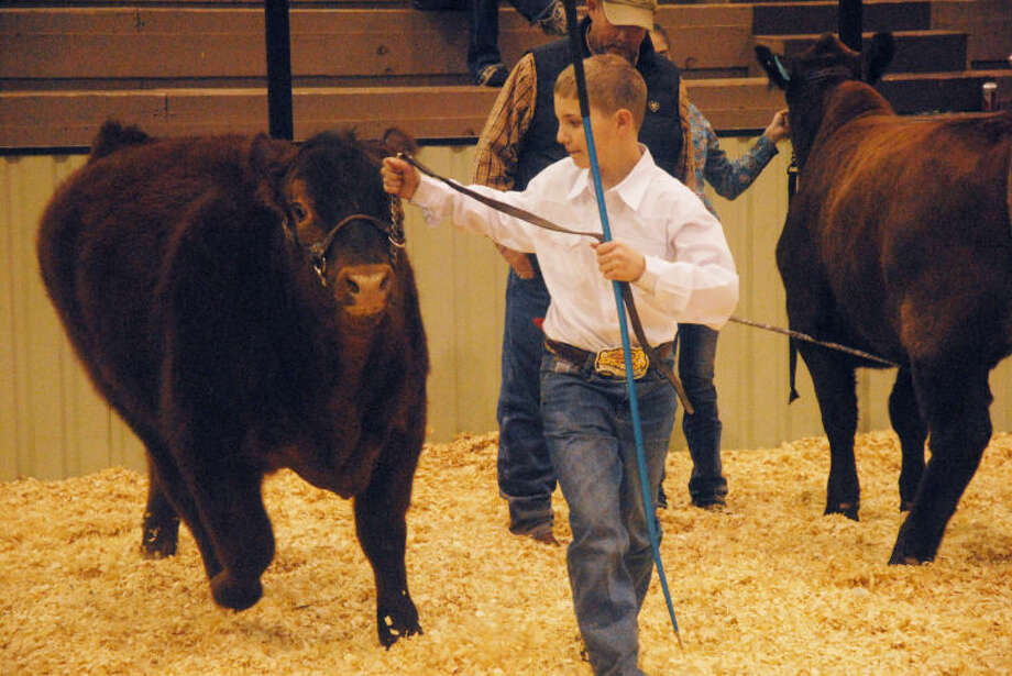 Plainview's Jake Dawson parades his steer around the ring during Saturday's Community Livestock Show at the Ollie Liner Center. Photo: Homer Marquez/Plainview Herald