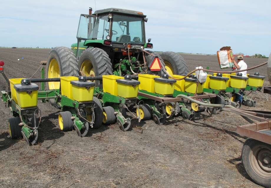 Dr. Gaylon Morgan/Texas A&M AgriLife Extension Service Though soil moisture is better than it has been for years, Texas High Plains growers are hesitating planting cotton because of low prices.