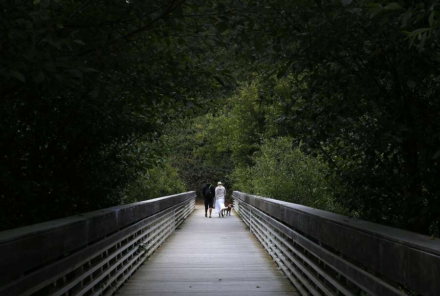 Visitors cross a footbridge over recently restored terrain at Muir Beach, Calif. on Wednesday, June 29, 2016. The National Park Service completed a restoration project of the Redwood Creek watershed near the beach and are planning similar changes to nearby Muir Woods. Photo: Paul Chinn, The Chronicle